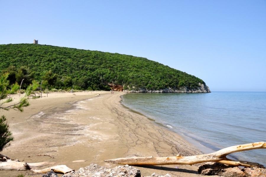 Spiaggia di Cala di Forno